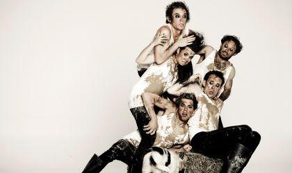 Cover image for 'Animal Farm shake & stir theatre co'