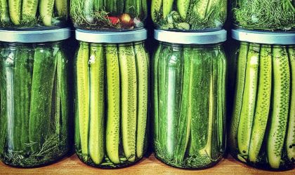 Cover image for 'Pickle Workshop'