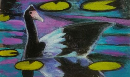 Cover image for 'Magpie Goose Arty Party II'
