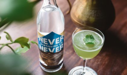 Cover image for 'Never Never Gin Night'