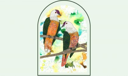 Cover image for 'Avians at Audit by Mandy Edge Tootell'