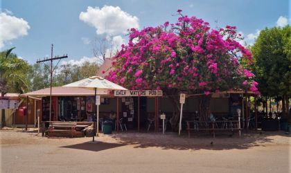 Cover image for 'Northern Territory Travelling Film Festival - Daly Waters Pub'