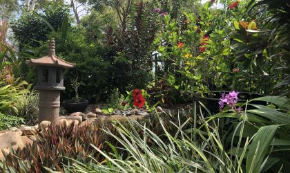Cover image for 'Open Gardens NT'