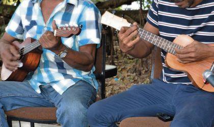 Cover image for 'Mandorah Ukulele and Folk Festival'
