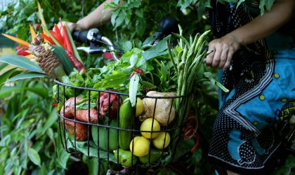 Cover image for 'Pedal to Produce - Parap Markets Tour'