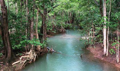 Cover image for 'Encountering Gurambai/Rapid Creek'