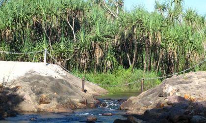 Cover image for 'Rapid Creek/Gurambai Walkshop'