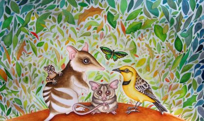 Cover image for 'Reach for the Skies – Protecting our Native Wildlife'