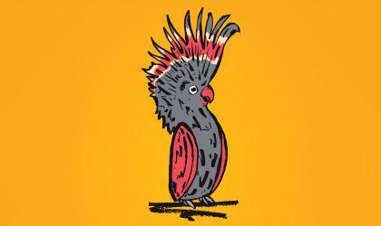 Cover image for 'Melbourne International Comedy Festival Roadshow'