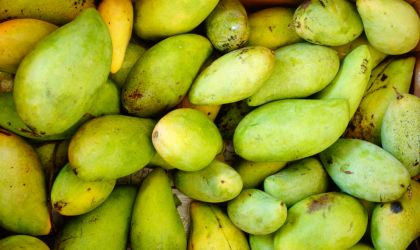 Cover image for 'Rapid Creek Market: green mangoes'