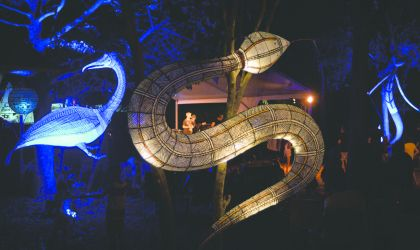 Cover image for 'Mahbilil Festival'